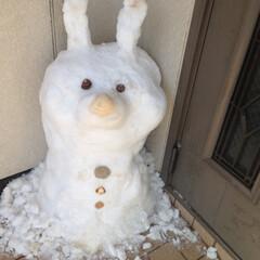 うさぎ/雪だるま/雪 雪だるま⛄️うさぎバージョン
