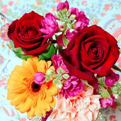 ありがとう♡/バラっていいにおいがしますね♡/花束♡/むすめからの誕生日プレゼント♡ むすめから花束❤️