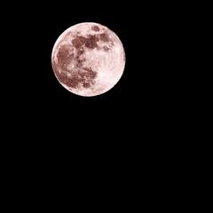 自然/moon/夜/月/月が綺麗ですね/月のおへそ/... フラワームーン🌻photo by むすめ