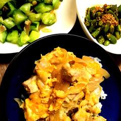 丼/みょうが/親子丼/和え物/グルメ/フード/... 親子丼  きゅうりとみょうがの和え物  …