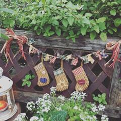 クリスマスグッズ/ガーランド/お庭 お庭にソックスガーランドを飾りました。