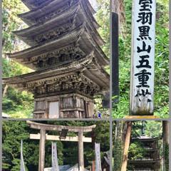 三神合祭殿/羽黒山/国宝羽黒山五重塔/パワースポット/出羽三山神社/おでかけワンショット 昨日、出羽三山神社に行って来ました。