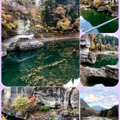 吊り橋/紅葉/塔のへつり/秋/風景/おでかけ 福島県の塔のへつり。有名ですよね。 紅葉…