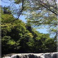 マイナスイオン/滝/暑さを避けに/おでかけ あまりに暑いので、水と涼を求めてお出かけ…(2枚目)