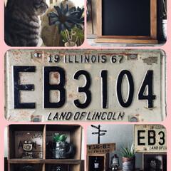 木箱/ナンバープレート/嬉しいプレゼント🎁/LIMIAペット同好会/ペット/猫/... 最近、毎朝ソラが決まってこの場所に居ます…
