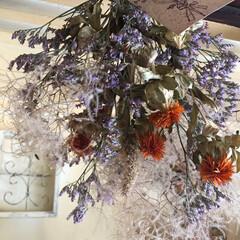 インテリア雑貨/スワッグ/ドライフラワー/ブルーファンタジー/スモークツリー/紅花/... 山形県の花 紅花を使ってスワッグを作りま…