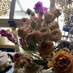 スイートピー/ドライフラワー/薔薇/ピンク/雑貨/暮らし 大好きな薔薇のドライフラワー♥️