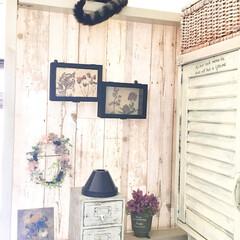 ランプシェード/木箱リメイク/木箱アレンジ/玄関/リース/フェイクフラワー/... ソラの毎朝の定位置。気持ちよく陽射しが入…