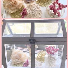 蝋引き花/ドライフラワー/ガラスハウス/ドイリー/リミ友さんから素敵便/令和の一枚/... リミ友さんのmamikoさんから、素敵な…