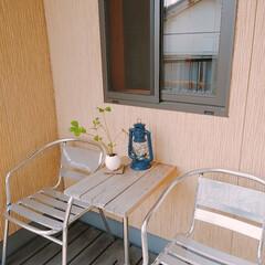 一個しかないですが/2階テラス/観葉植物/ポイントで・・ 2階テラスの一角。 今日はお天気もいいの…