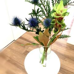 ガラス/Flower/花/花器/花瓶 本日の購入品(1枚目)