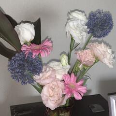 花のある暮らし/いいねありがとうございます/リビング 息子の転職、娘の最後のインタハイと、忙し…(1枚目)