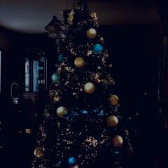 クリスマスツリー クリスマスツリー出しました✨  飾り付け…(1枚目)