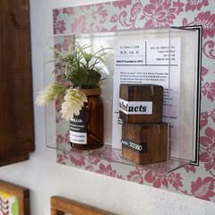 ニトムズ/デコルファ/decolfa/インテリア/DIY/簡単DIY/... 収納が少ないお部屋でも、貼るだけで簡単に…(1枚目)