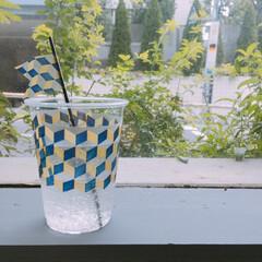 ニトムズ/デコルファ/decolfa/リノベーション/DIY/簡単DIY/... プラスチックカップをインテリアフィルムテ…