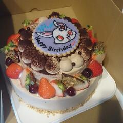 誕生日ケーキ/バースデーケーキ/チョコケーキ/生チョコケーキ 誕生日二段チョコケーキ♪
