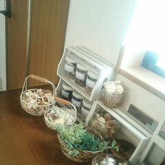 小窓/インテリア 花材がどんどん増えます😅  専用の棚を作…