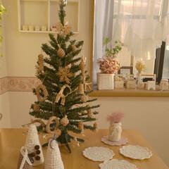 ナチュラルクリスマス/ストローオーナメント/クリスマスツリー/雑貨/ハンドメイド/住まい/... ツリーを出しました✨  オーナメントは昨…