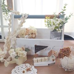 かぎ針編みのラリエット/かぎ針編み/まほさんの木のボックス/出窓のある暮らし/おうち/ハンドメイド/... まほさんの木のボックスにかぎ針編みのラリ…