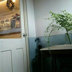 カフェ/おでかけ 週末しか営業してない ウィークエンドカフ…
