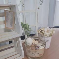 白い木の実/空き瓶再利用/ナチュラルテイストが好き/出窓インテリア/インテリア 午後の出窓です✨  空き瓶に白い木の実を…