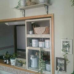 キッチンカウンター/DIY/インテリア キッチンカウンター上にシェルフを作りまし…