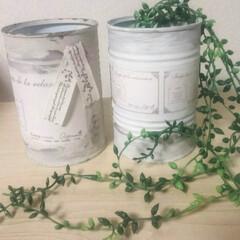 空き缶再利用/インテリア トマト缶🍅をペイントしました😆