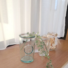 空き瓶再利用/ナチュラルインテリア/出窓インテリア/インテリア 今朝の出窓です✨