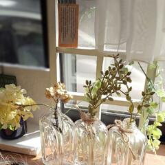 空き瓶再利用/フェイクフラワー/朝の出窓/インテリア 今朝の出窓です✨  暑くなりそうです☀️💦