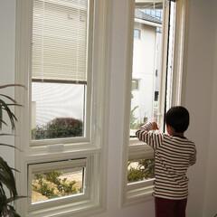 輸入窓/木製 アメリカ窓メーカー「Pella Wind…