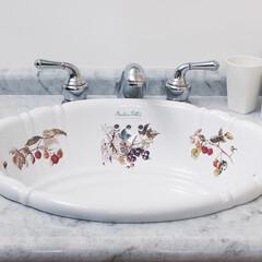 洗面/カントリースタイル/トイレ ピーターラビット™の作者で知られるビアト…