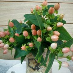 ヒペリカム/リメイク缶/雑貨 朝 お仏壇のお花買いに行って ピンクのヒ…