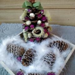 クリスマス/クリスマスツリー/ハンドメイド/雑貨/100均/ダイソー 大きな松ぼっくりが あったので ドライフ…(2枚目)