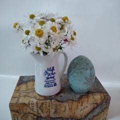 花かんざしドライ/ドライフラワー/雑貨/100均/セリア 温かい日が続いて🎶 花かんざしがよく咲き…