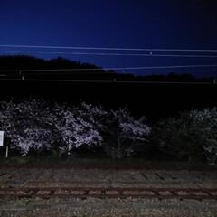 春のフォト投稿キャンペーン/フォロー大歓迎/風景 仕事の帰りです(*^^*)  今日は電車…(2枚目)
