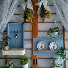 フェイクグリーン/リメイク/Can Do/グリーン/DIY/セリア/... うちは 和風住宅です  それもかなりの築…
