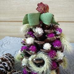 クリスマス/クリスマスツリー/ハンドメイド/雑貨/100均/ダイソー 大きな松ぼっくりが あったので ドライフ…
