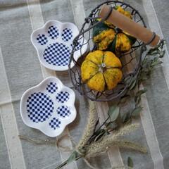 おもちゃかぼちゃ/100均/ダイソー/セリア セリアで 肉球の豆皿見つけて(笑) また…