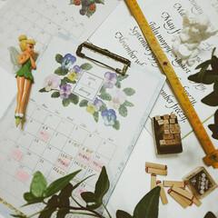 papamamaでroomclip.../はじめまして、初投稿/ティンカーベル ボールペン/折尺/アイビー/マステ/... キャンドゥのカレンダーは、12か月、色々…