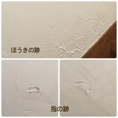 しくじった!/漆喰DIY/練り済み漆喰/ホワイトアスパラ/ベジタウォール/DIY/... 漆喰 乾いたー♪ と思ったら!! ほうき…