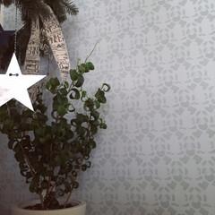 オリジナルダマスク柄壁紙/ベンジャミンバロック/フライングリース 寝室の壁とベンジャミンバロック ー☆ 新…
