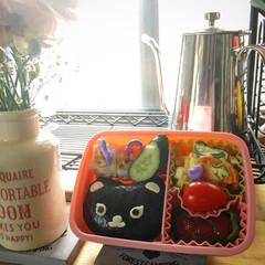 意地悪そうな猫/運動会のお弁当/キッチン雑貨/セリア/キッチン 娘の運動会弁当、意地悪そうな猫になっちゃ…(1枚目)