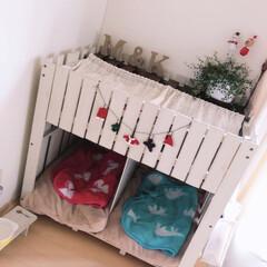 クリスマス/すのこリメイク/犬小屋DIY/ペット/犬/100均/... ハロウィン🎃をお片づけして、とりあえずの…