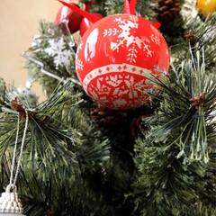 リビング/スタジオクリップ/クリスマスツリー/雑貨/インテリア/住まい 我が家のツリー🌲今年はオーナメントを赤と…