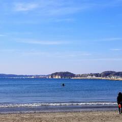 また行きたいな/自然を満喫/自然/休日/家族でお出かけ/きれい/... 今日は家族みんなで 逗子の真名瀬海岸へ行…(3枚目)
