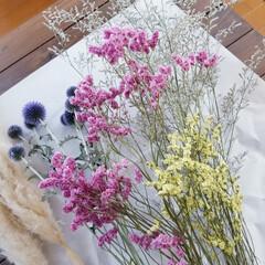 お花大好き/暮らしを楽しむ/暮らし/インテリア/嬉しいな/サービス/... 今日は仕事帰りに お花屋さんに寄りました…(8枚目)