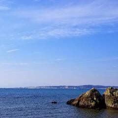 また行きたいな/自然を満喫/自然/休日/家族でお出かけ/きれい/... 今日は家族みんなで 逗子の真名瀬海岸へ行…(6枚目)