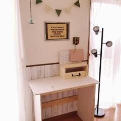 100均/合板/SPF材/収納ボックス/ゴミ箱/窓枠DIY/... 急にスイッチが入り ここのところ休みのた…(7枚目)