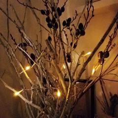 LED電球/木の枝ツリー/インテリア/クリスマス2019/セリア/100均/... 昨日はお休みで旦那さんと サンタクロース…