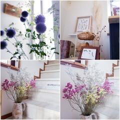 お花大好き/暮らしを楽しむ/暮らし/インテリア/嬉しいな/サービス/... 今日は仕事帰りに お花屋さんに寄りました…(1枚目)